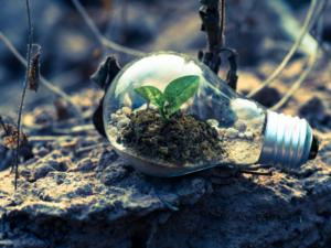 Fit for 55: il welfare delle PMI più eco-friendly